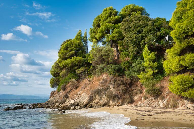 Plaja Koukounaries, una dintre cele mai populare plaje din Skiathos, Grecia